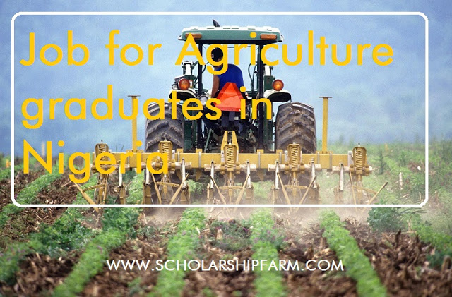 Photo of Job for Agriculture Graduates in Nigeria